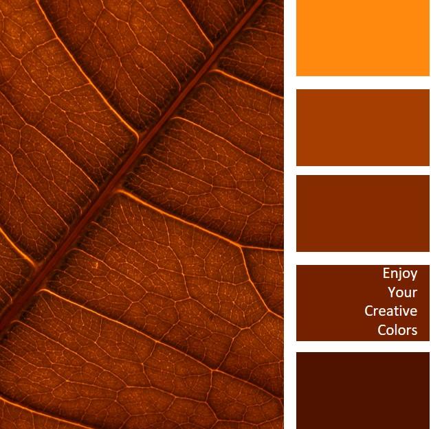 COLOR PALETTE #0202 - brown leaf